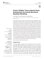 Fusion validity: Theory-based scale assessment via causal structural equation modelling